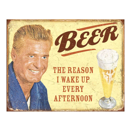 Metalen Retro Bord Beer The Reason