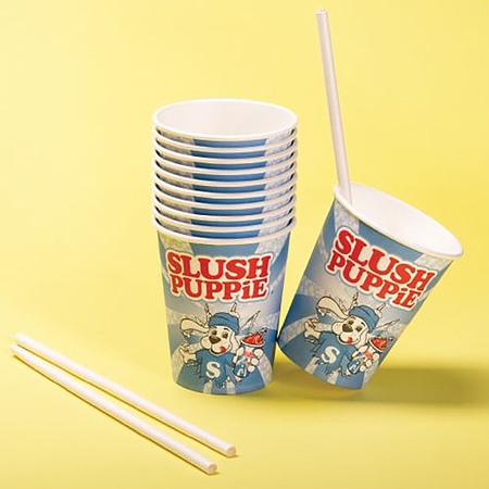 Fizz Slush Puppy Kartonnen Bekers en Rietjes Set van 20